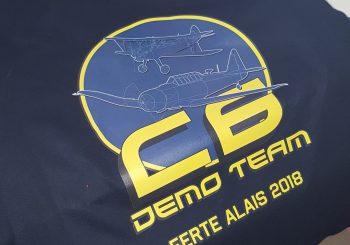 Lan C6 démo team : Ferté 2018